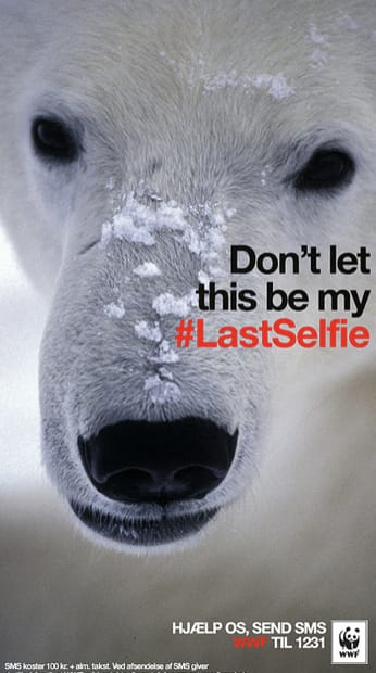 Snapchat WWF content